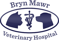 Bryn Mawr Veterinary Hospital